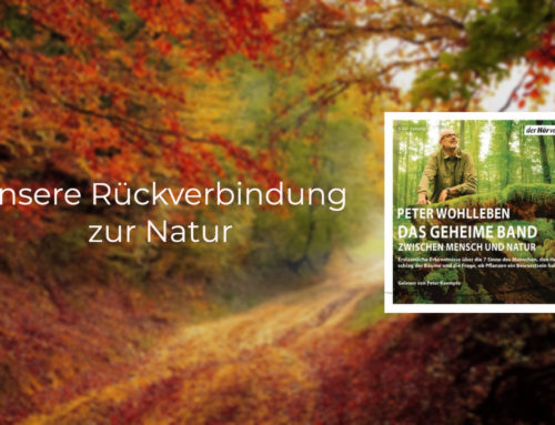 Peter Wohlleben – Das geheime Band – Unsere Rückverbindung zur Natur